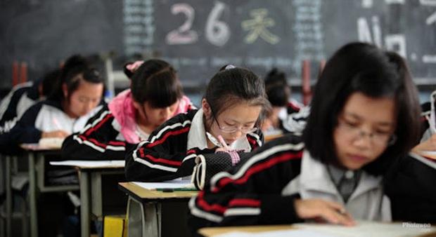 Đạt điểm trung bình 9.6, hạng 3, nữ sinh lớp 7 vẫn bị bố mẹ chê: Thế này thì có giỏi giang gì? - Ảnh 2.