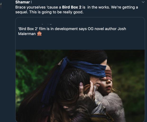 Bird Box xác nhận phần 2, khán giả rủ Sandra Bullock đeo thêm khẩu trang cho hợp mùa dịch - Ảnh 8.
