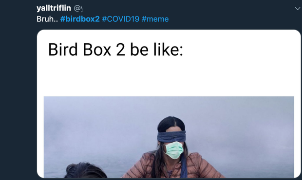 Bird Box xác nhận phần 2, khán giả rủ Sandra Bullock đeo thêm khẩu trang cho hợp mùa dịch - Ảnh 4.