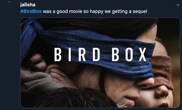 Bird Box xác nhận phần 2, khán giả rủ Sandra Bullock đeo thêm khẩu trang cho hợp mùa dịch - Ảnh 7.