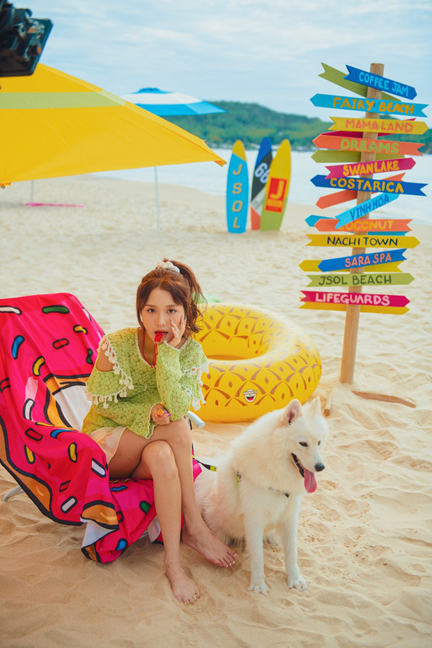 JSol và Han Sara khoá môi ngọt ngào trên bãi biển nhờ công lao của... một chú cún trong MV Hiếm Có Khó Tìm - Ảnh 9.