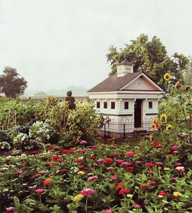 Chiêm ngưỡng những chiếc chuồng gà xa hoa bậc nhất từng được con người xây dựng - Ảnh 18.