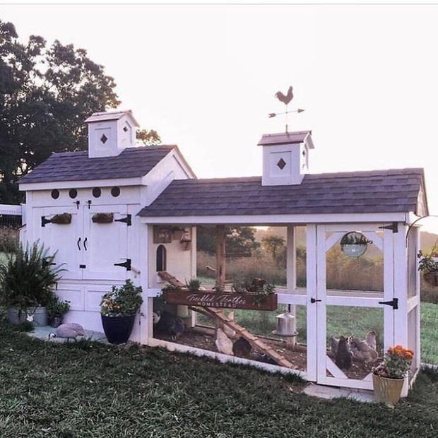 Chiêm ngưỡng những chiếc chuồng gà xa hoa bậc nhất từng được con người xây dựng - Ảnh 4.