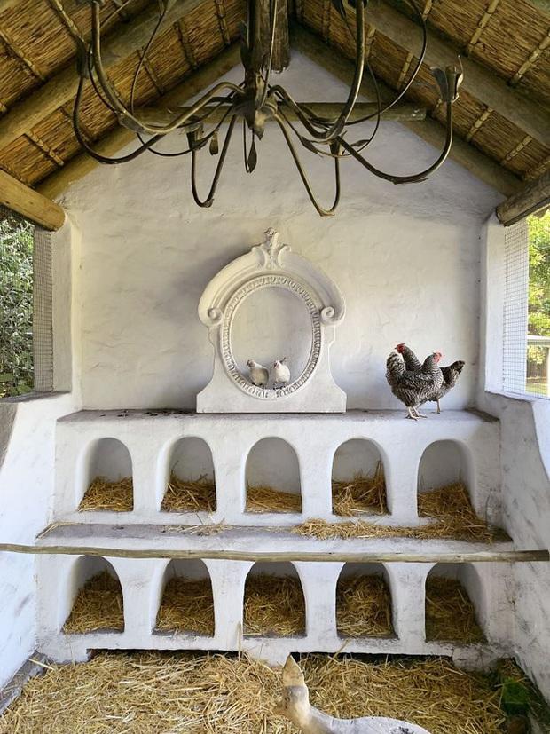 Chiêm ngưỡng những chiếc chuồng gà xa hoa bậc nhất từng được con người xây dựng - Ảnh 6.