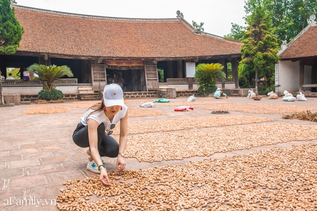 Ngoại thành Hà Nội có một cổ trấn trăm năm tuổi, nơi lưu giữ tuổi thơ của những con người lớn lên vùng đất Bắc - Ảnh 4.