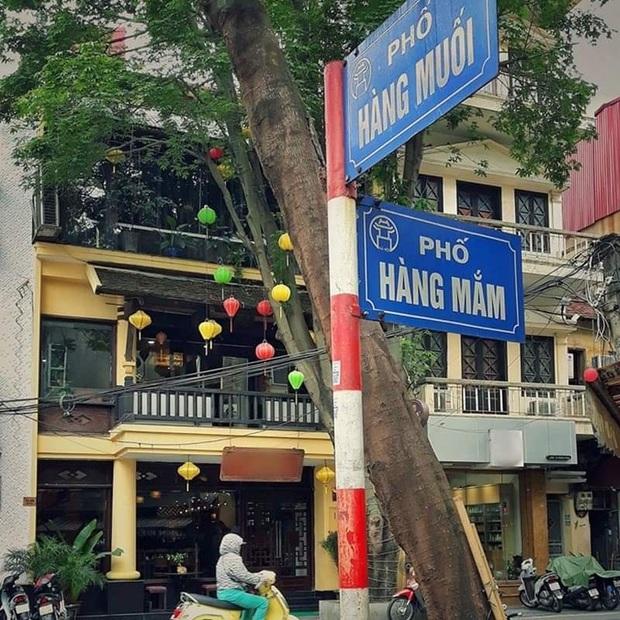 Đố bạn, ở Việt Nam khu phố nào mặn nhất? Nếu chưa biết hãy đến với phố gia vị ở Hà Nội - Ảnh 1.