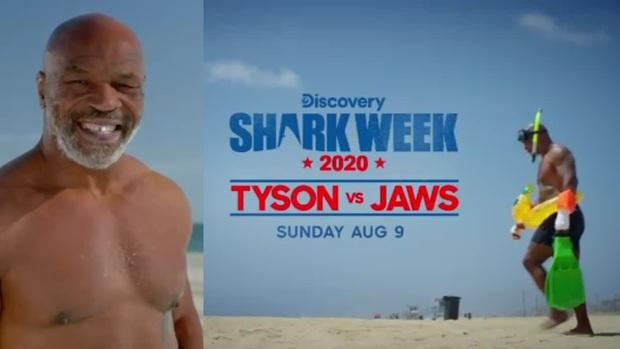 Trở lại sau thời gian dài giải nghệ, Mike Tyson chuẩn bị đối đầu cùng... cá mập trắng - Ảnh 1.
