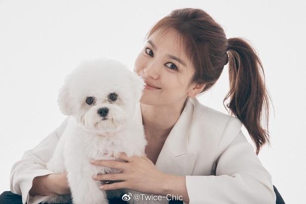Song Hye Kyo lần đầu lộ diện sau tin đồn Song Joong Ki hẹn hò nữ luật sư, nhan sắc và biểu cảm gây chú ý - Ảnh 2.