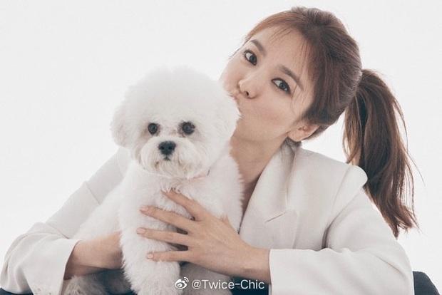 Song Hye Kyo lần đầu lộ diện sau tin đồn Song Joong Ki hẹn hò nữ luật sư, nhan sắc và biểu cảm gây chú ý - Ảnh 3.
