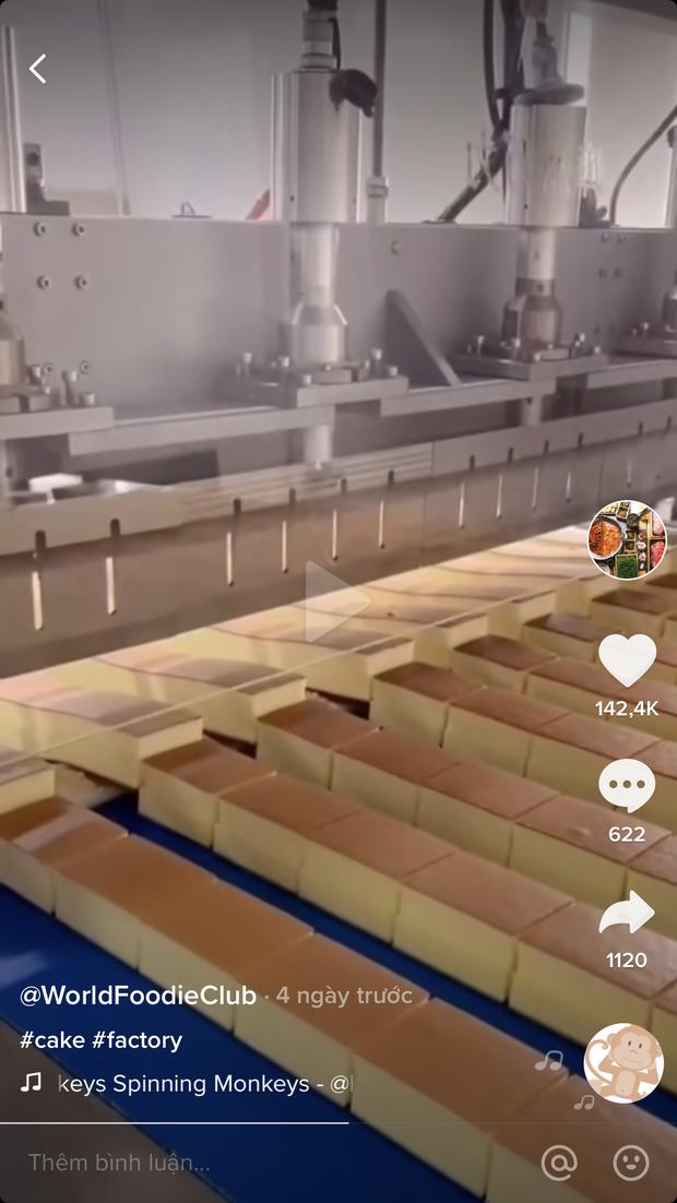 Cận cảnh quy trình làm ra chiếc bánh bông lan trong nhà máy, xem clip thôi đã thấy choáng ngợp vì sự công phu - Ảnh 1.