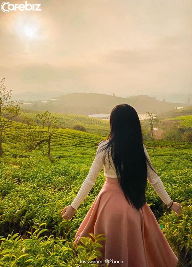 Không chỉ có Thung lũng Tình yêu hay Hồ Than thở, Đà Lạt còn sở hữu những quán cafe đẹp - độc - lạ, nhất định phải ghé thăm!  - Ảnh 9.