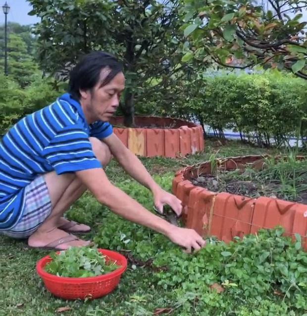 Hoài Linh đăng ảnh vết thương chảy máu chân đáng lo kèm status kể chuyện bị phản bội - Ảnh 3.