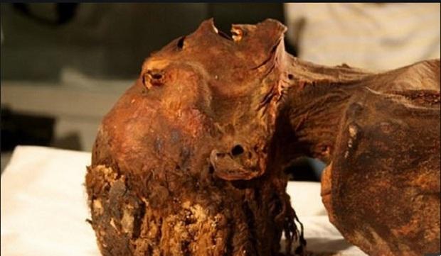 Vén màn bí ẩn xác ướp công chúa gào thét trong mộ cổ Ai Cập 3000 năm tuổi - Ảnh 1.