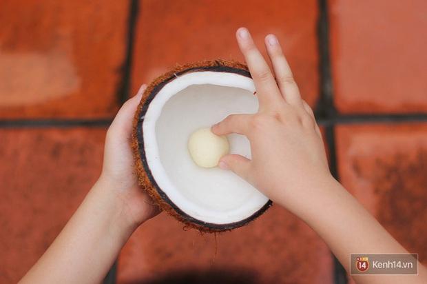 """Mộng dừa - món ăn tuổi thơ của người Việt từng bị """"độn"""" giá lên tới 300k/kg vì quá hiếm, nếu mua cái càng to thì… càng dở - Ảnh 3."""