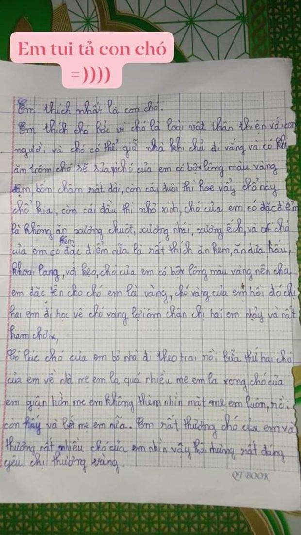 Tả cún cưng bỏ nhà đi theo trai, bài văn của học sinh tiểu học khiến cộng đồng mạng cười ngất - Ảnh 1.