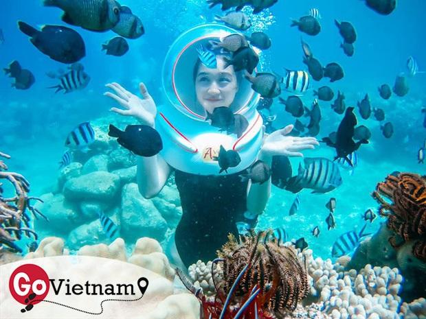 Thử trọn gói dịch vụ 5 sao ở Nha Trang: Đi bộ dưới biển, bay dù lượn, tắm bùn. Chỉ hết 8 triệu? - Ảnh 16.