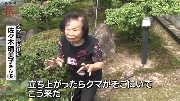 Cụ già 82 tuổi hỗn chiến với gấu hoang nặng 150kg: Bà đấm nó văng lên trời luôn - Ảnh 1.