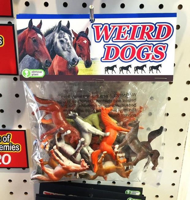 Công ty tấu hài cực mạnh vì chỉ sản xuất những món đồ chơi không ai hiểu nổi - Ảnh 7.