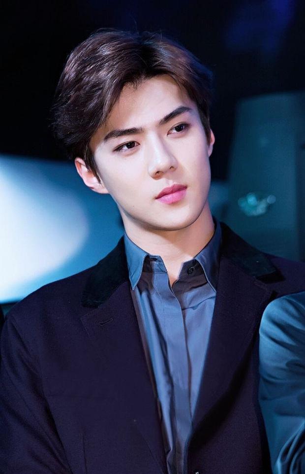 Nam thần Sehun (EXO) chính thức trở thành cổ đông công ty thể thao điện tử nổi tiếng nhất Hàn Quốc, được CEO ưu ái - Ảnh 2.