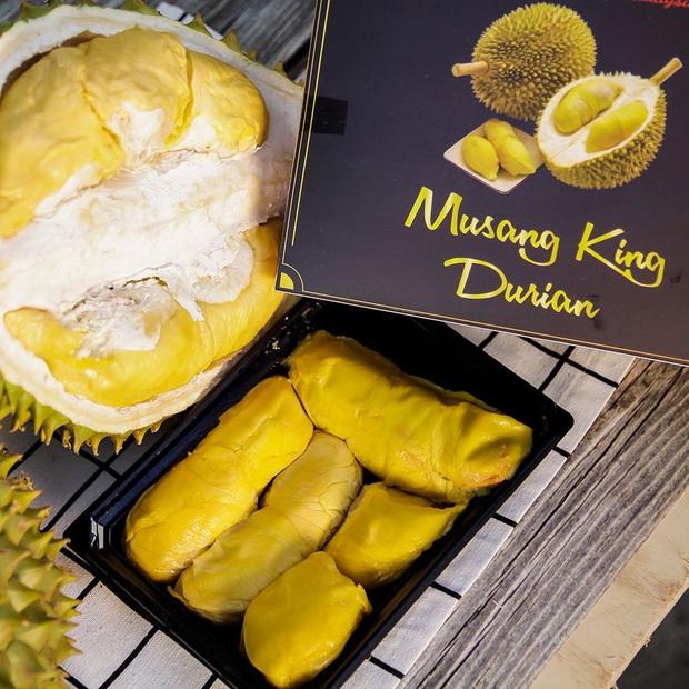 Tất tần tật thông tin về loại sầu riêng ngon nhất thế giới bán tại Việt Nam với giá 1,6 triệu/kg, dù đắt vẫn được giới sành ăn đổ mua - Ảnh 1.