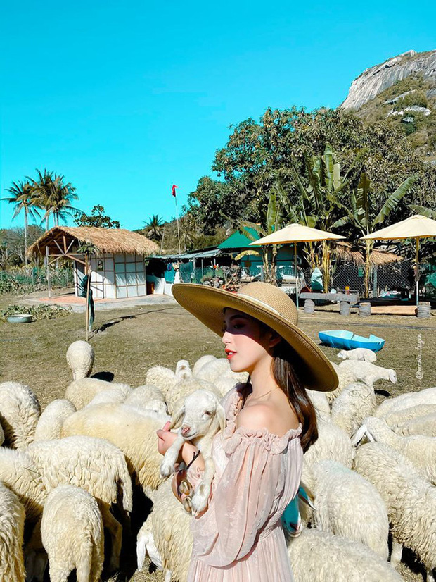 Lênh đênh 2N1Đ tại đảo Bình Hưng, Nha Trang chỉ với 1,5 triệu/người: Xứng đáng là Maldives Việt Nam với cảnh đẹp mãn nhãn, hải sản phủ phê - Ảnh 6.