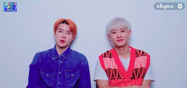 Phỏng vấn đặc biệt EXO-SC: Sehun cằn nhằn làm việc với EXO quá ồn ào, Chanyeol thổ lộ muốn thắng hạng nhất trên các show âm nhạc! - Ảnh 5.