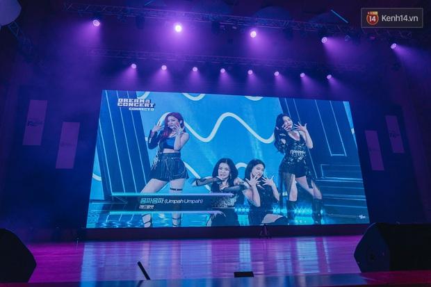Hàng trăm fan tại Hà Nội cùng xem Dream Concert phát sóng trực tuyến trên toàn cầu; EXO-SC, Red Velvet và dàn sao Kpop quẩy hết nấc - Ảnh 9.