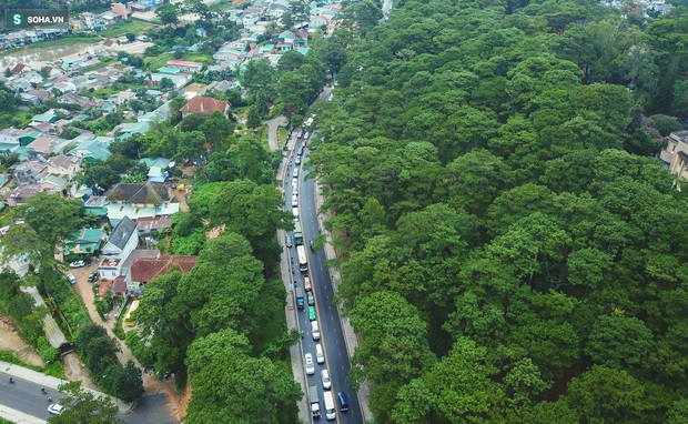 Cửa ngõ Đà Lạt ùn tắc kéo dài, hàng trăm ôtô nhúc nhích từng chút trong cơn mưa chiều - Ảnh 3.