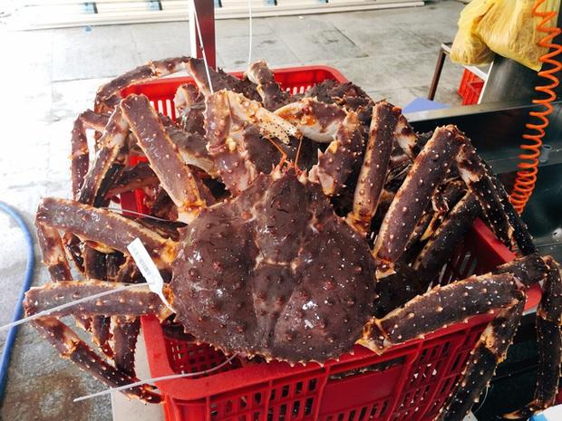Nhiều người bạo tay chi vài chục triệu mua hải sản về tự nấu, trong đó cua hoàng đế siêu khủng có gì đặc biệt mà giá lên đến gần 2 triệu đồng/kg? - Ảnh 5.