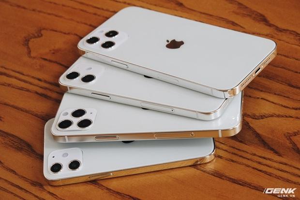 Trên tay mô hình iPhone 12, iPhone 12 Max, iPhone 12 Pro và iPhone 12 Pro Max tại Việt Nam - Ảnh 6.