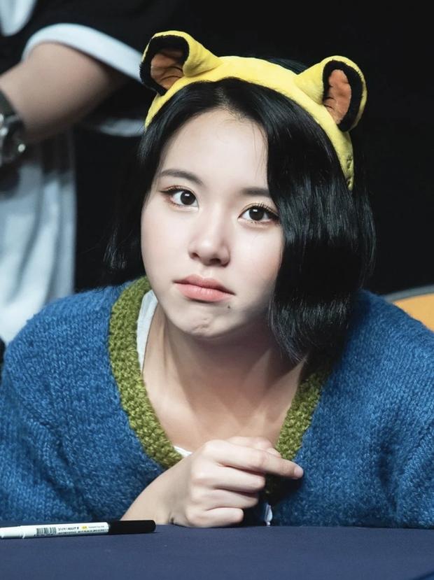 Bác sĩ thẩm mỹ khen Twice là hình mẫu lý tưởng để dao kéo theo: Môi đẹp phải giống Nayeon, mắt phải như Momo mới chuẩn - Ảnh 5.