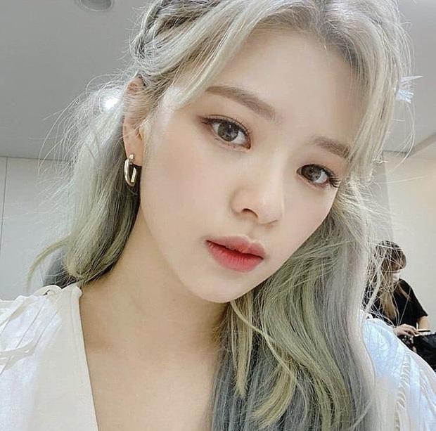 Bác sĩ thẩm mỹ khen Twice là hình mẫu lý tưởng để dao kéo theo: Môi đẹp phải giống Nayeon, mắt phải như Momo mới chuẩn - Ảnh 8.