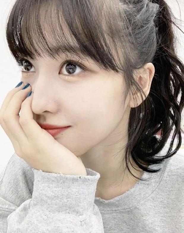 Bác sĩ thẩm mỹ khen Twice là hình mẫu lý tưởng để dao kéo theo: Môi đẹp phải giống Nayeon, mắt phải như Momo mới chuẩn - Ảnh 2.