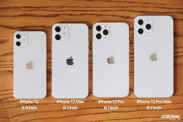 So sánh iPhone 12 5,4 inch với iPhone 4, iPhone 5 và iPhone 6: Chiếc iPhone nhỏ gọn đáng để chờ đợi - Ảnh 1.
