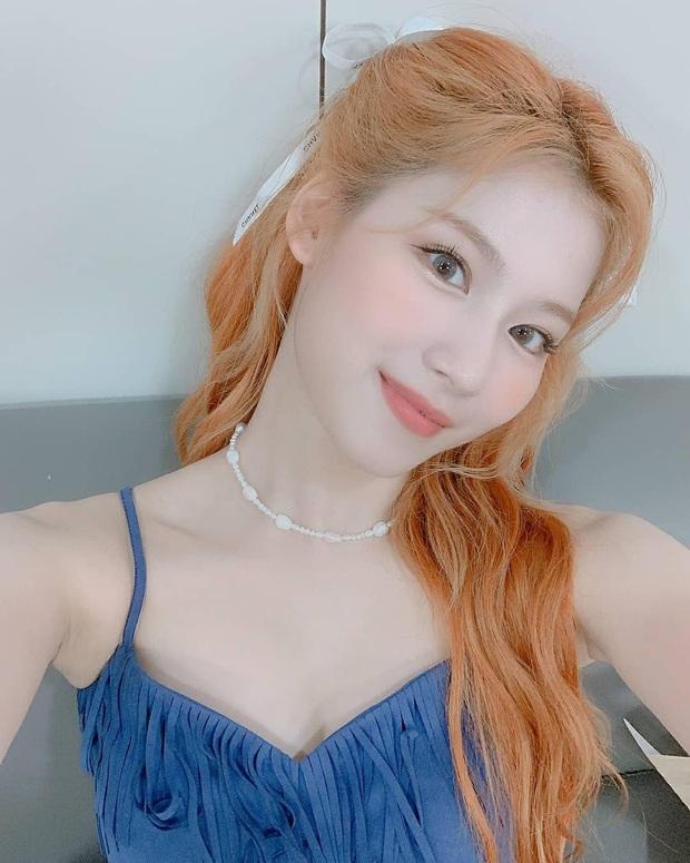 Bác sĩ thẩm mỹ khen Twice là hình mẫu lý tưởng để dao kéo theo: Môi đẹp phải giống Nayeon, mắt phải như Momo mới chuẩn - Ảnh 3.