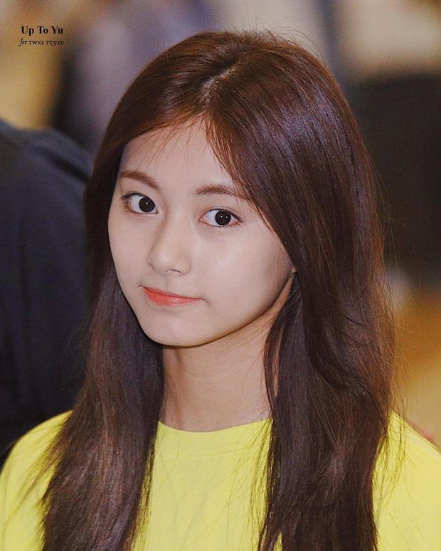 Bác sĩ thẩm mỹ khen Twice là hình mẫu lý tưởng để dao kéo theo: Môi đẹp phải giống Nayeon, mắt phải như Momo mới chuẩn - Ảnh 6.