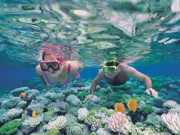 Ai bảo chỉ xả rác mới huỷ hoại môi trường biển, những hành vi vô ý này của du khách cũng có thể khiến đại dương kêu cứu - Ảnh 3.