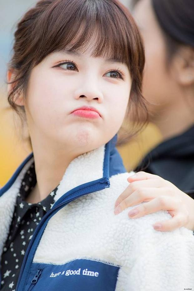 5 idol đã hot lại còn có bố mẹ nổi tiếng: Mỹ nhân T-ara ngậm thìa vàng, bố Jungyeon (TWICE) là đầu bếp của Tổng thống - Ảnh 6.
