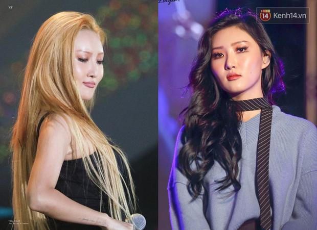 """12 idol """"biến hình"""" từ tóc thẳng sang tóc xoăn: Người xinh nữa xinh mãi, người hao hụt vài điểm visual - Ảnh 7."""