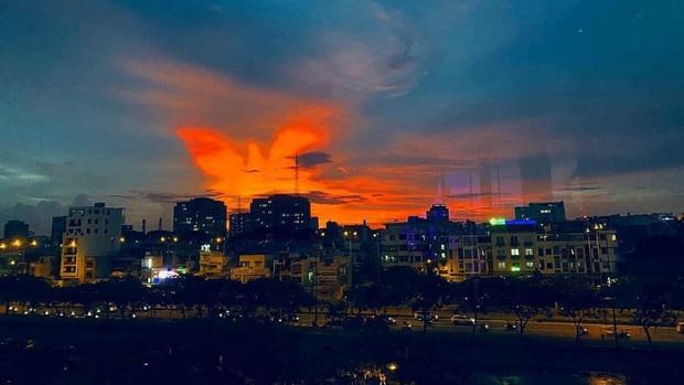 Dân mạng rần rần chia sẻ bầu trời hoàng hôn ở Sài Gòn có hình ảnh tuyệt đẹp giống như phượng hoàng - Ảnh 1.