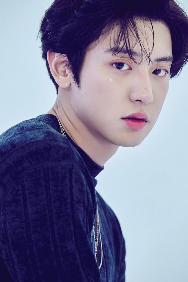Nhà báo nổi tiếng chọn ra 6 idol đa tài nhất: EXO áp đảo BTS về số lượng, IU hay Suzy được đánh giá cao hơn? - Ảnh 14.