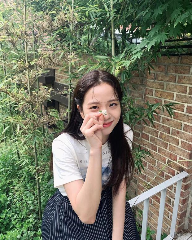 Quốc gia đại diện cho nhan sắc từng thành viên BLACKPINK: Jisoo đúng chuẩn Hoa hậu Hàn Quốc nhưng Rosé bất ngờ không phải vẻ đẹp Úc? - Ảnh 4.