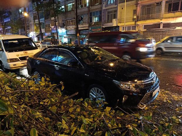 Mưa lớn, cây cổ thụ gãy đổ trúng nhiều người, đè bẹp xe ô tô  - Ảnh 3.