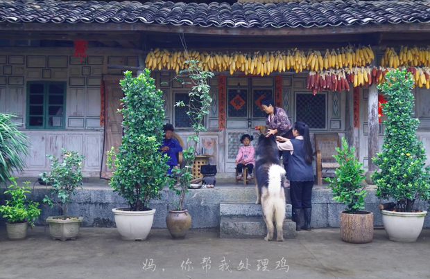 """Ngay tại Trung Quốc đã có loạt vlogger phong cách na ná Lý Tử Thất, có người còn gần như """"copy"""" nguyên si - Ảnh 6."""