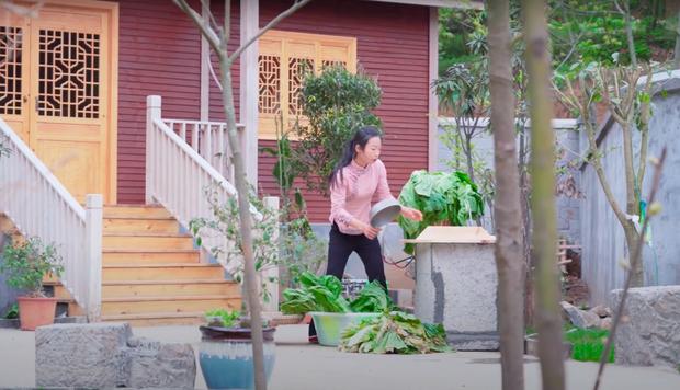 """Ngay tại Trung Quốc đã có loạt vlogger phong cách na ná Lý Tử Thất, có người còn gần như """"copy"""" nguyên si - Ảnh 24."""