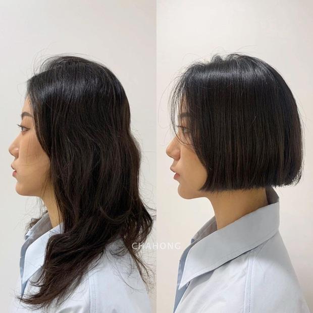 10 màn lột xác cho thấy mùa hè cắt tóc bob ngắn là chuẩn chỉnh: Vừa xinh lại vừa mát, ai cũng trẻ và sang hơn - Ảnh 1.