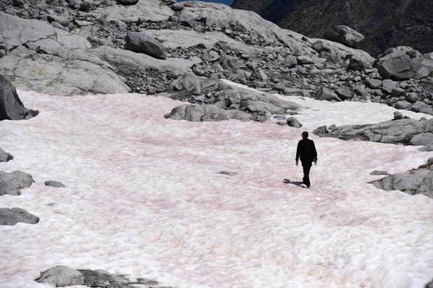 Băng hồng bí ẩn bất ngờ xuất hiện trên đỉnh núi cao nhất châu Âu khiến khoa học rất lo sợ về hệ quả kinh khủng sẽ xảy ra - Ảnh 1.