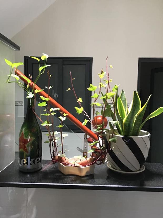 Hè này muốn đu trend chơi bonsai, tốn tiền mua cây làm gì khi tất cả bạn cần chỉ là một củ khoai lang - Ảnh 11.