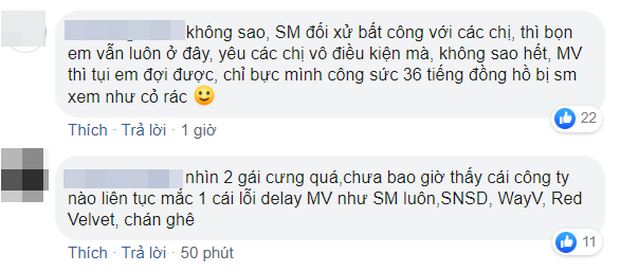 Fan phẫn nộ vì SM lại hoãn MV của IRENE & SEULGI mà không thông báo 1 lời, ghi sai tên thành… EXO-SC khi giới thiệu trên trang chủ - Ảnh 12.