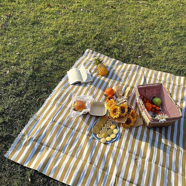 Giờ hội chị em sành điệu toàn dùng khăn trải bàn làm phông nền sống ảo thôi, bạn cũng nên biết để bắt trend kịp thiên hạ - Ảnh 5.
